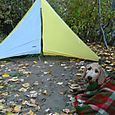 Jordan's small tent and big dog