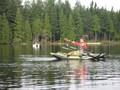 Beaver_lake2_1