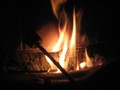Roasting_marshmallows